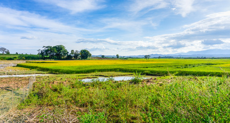 dong: Landscape of farm field, Lam Dong, Viet Nam Stock Photo