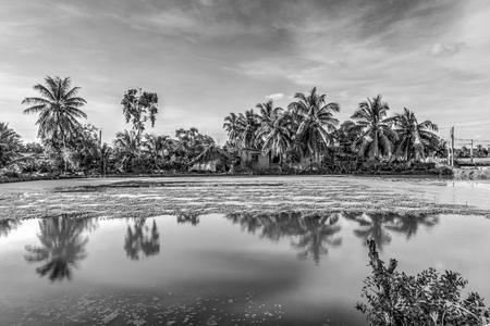 Beautiful landscape of farmland. Black and white Stock Photo