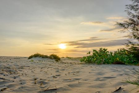 Sunset on sand Stock Photo