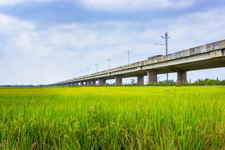 フィールド上の高速道路