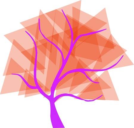 centenarian:  orange tree