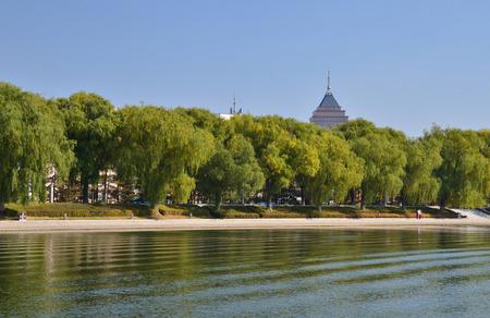 riverside tree: Riverside view  Stock Photo