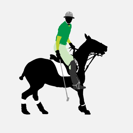 Polo player Illustration