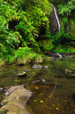 waterfall at Amber Mountain National Park, Madagascar