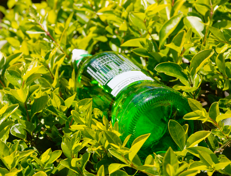 green bottle left in nature and surrounded by plants and leaves