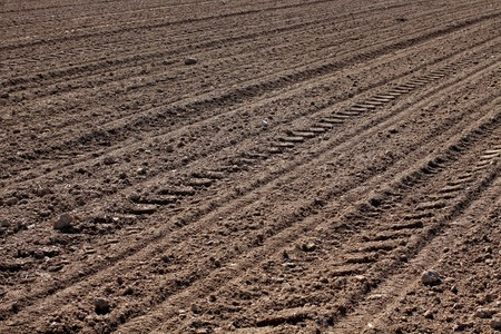 the ploughed field: Brown ploughed field in spring.
