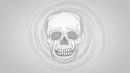 Crâne humain (illustration) Banque d'images - 36374137