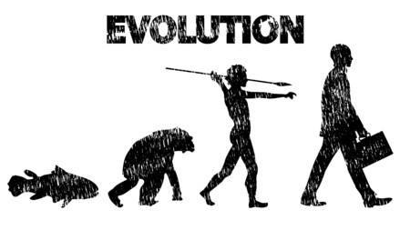Evolution pencil drawing