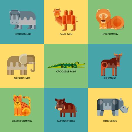 hipopotamo caricatura: Conjunto de vectores de diferentes iconos planos geométricos animales africanos. Leones, guepardos, hienas, jabalíes, elefantes, camellos, cocodrilos, hipopótamos, rinocerontes, ñus. Animales para el diseño de infografía.