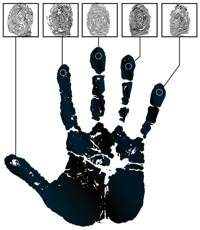 Vector handprints and five fingerprints