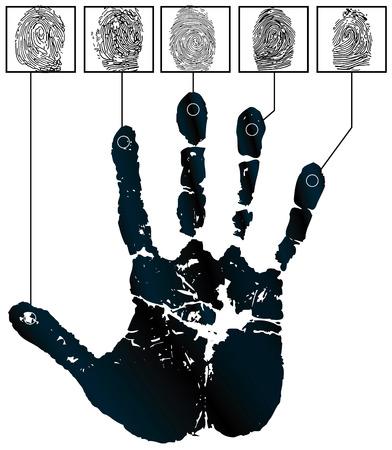 theft proof: Vector handprints and five fingerprints