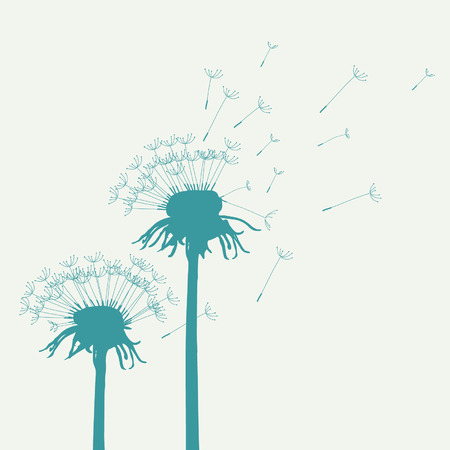 wild botany: Vector Dandelions