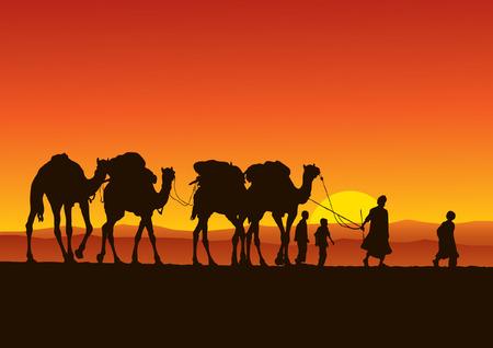 Camel Caravan Vector