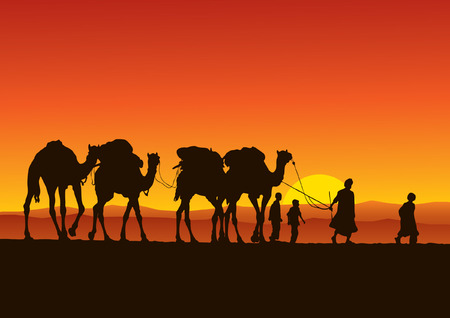 desert sunset: Camel Caravan Illustration