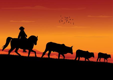 Cowboy Çizim