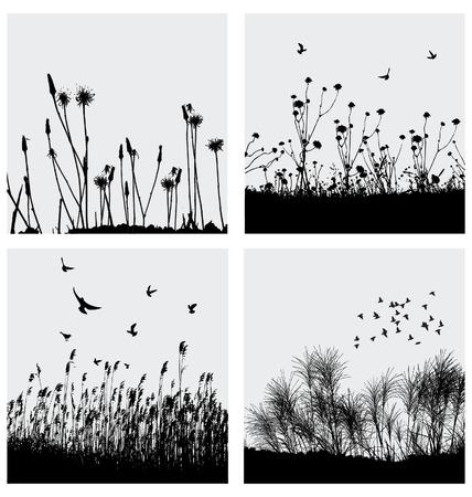 zwerm vogels: Gras Stock Illustratie