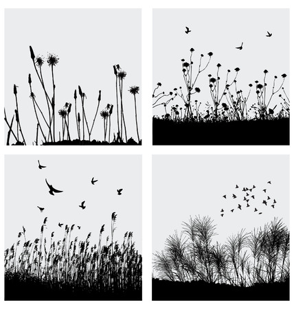 flock of birds: Grass Illustration