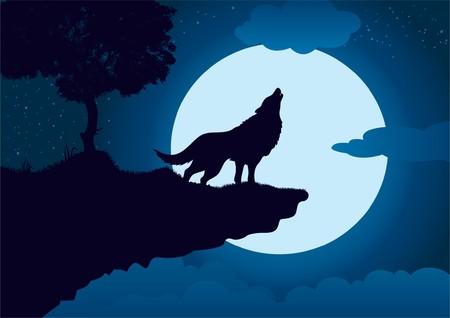 El aullido de lobo  Foto de archivo - 7233481