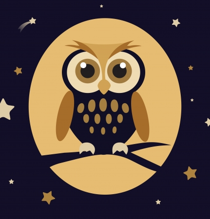 owl on branch: Night Owl