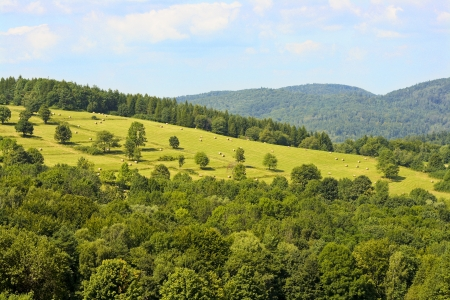 View of polish landscape in bieszczady mountains