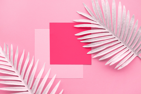 Collection of white tropical leaves,foliage plant with geometric color space background.Abstract leaf decoration design.Exotic nature for cover template 版權商用圖片 - 122876054