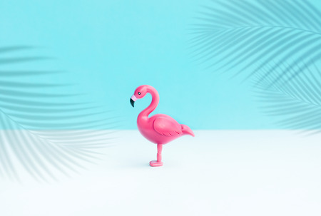 Flamingo bird model in color background.Summer and animal concepts ideas
