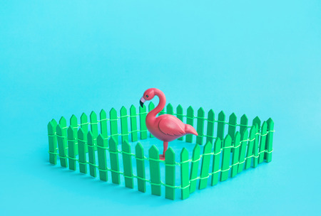 Flamingo bird model mock up in fence on color background.Summer and animal concepts ideas Stock Photo