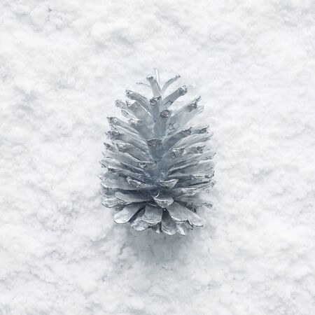 Winter season,christmas concepts ideas with silver pine cone and snow.top view