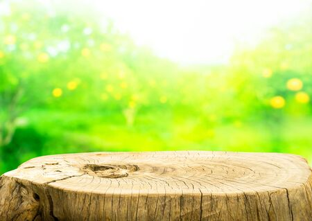 Bella struttura di vecchio ceppo di albero tavolo su sfocatura giardino di frutta fattoria sfondo. Per creare la visualizzazione del prodotto o progettare il layout visivo chiave.