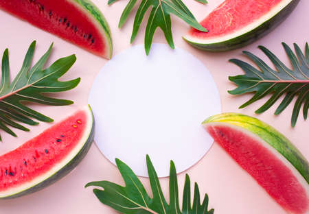 Watermelon slice with xanadu leaves on pastel background.Summer fruit concept ideas. flat lay design 免版税图像