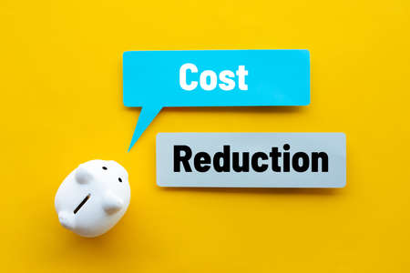 Cost reduction or save budget concepts with text and piggy bank.business management