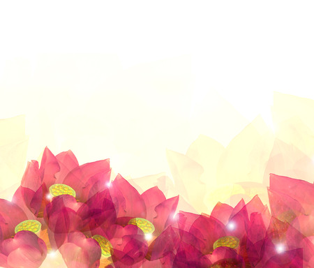 fuschia: Abstract soft flower background, design