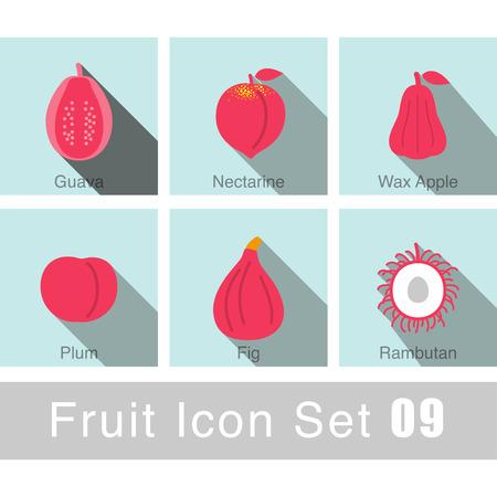 Fruit icon design set Vector