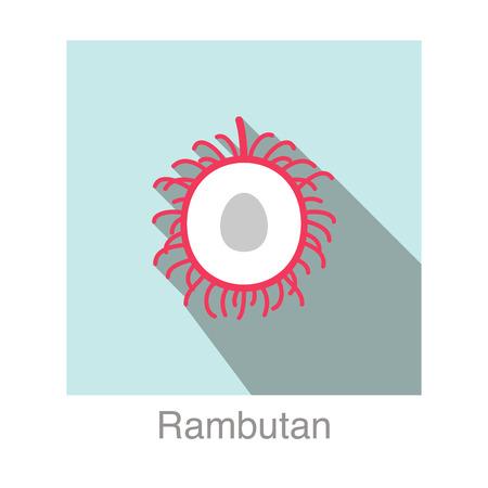 Rambutan fruit flat icon design Vector