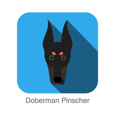 pinscher: Doberman Pinscher dog face flat icon