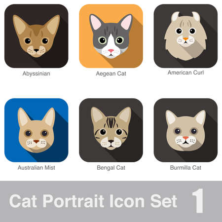 domestic cat: Cat breed face cartoon flat icon design