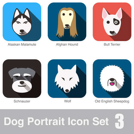 afghan hound: Dog face character icon design set