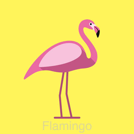 flamenco ave: Beautiful flamingo bird seriers Vectores