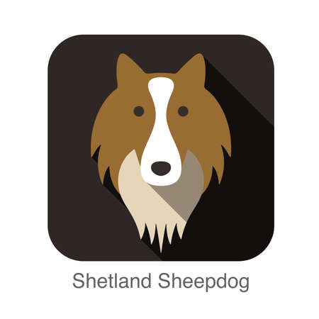 sheepdog: Welsh sheepdog face flat icon