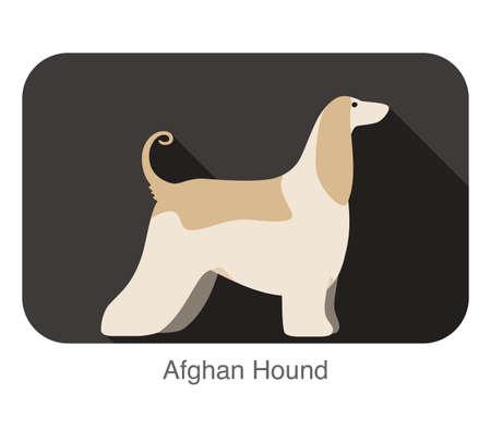 afghan: Afghan Hound dog breed flat icon design