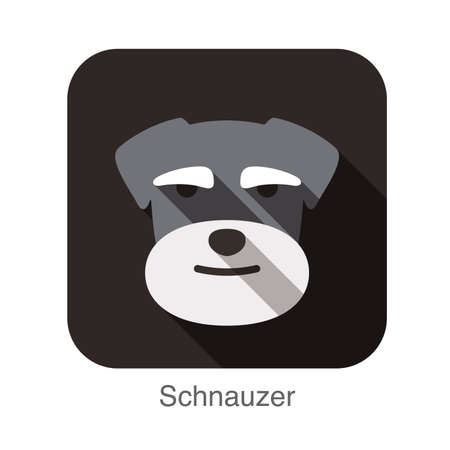 smile close up: Schnauzer dog face flat design
