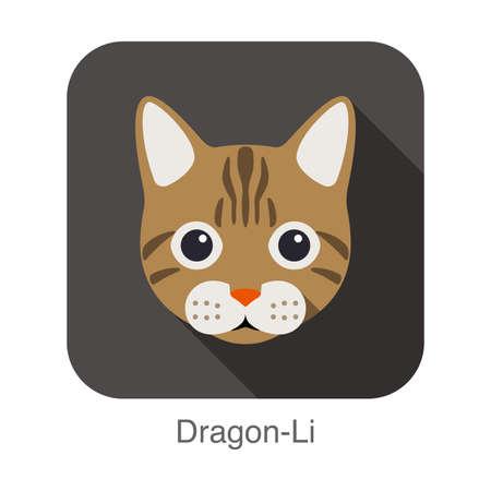 breed: Dragon-Li, Cat breed face cartoon flat icon design Illustration