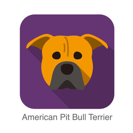 pit bull: American pit bull terrier dog face flat icon