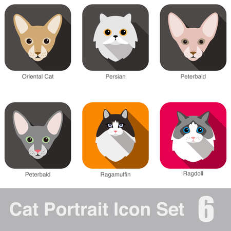 breed: Cat breed face cartoon flat icon design