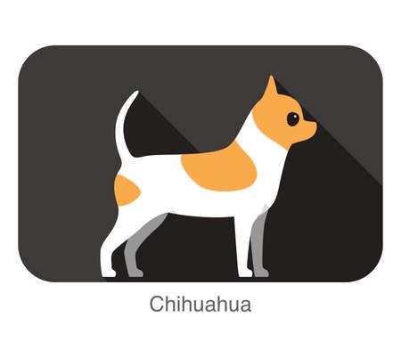 breed: Chihuahua dog breed flat icon design Illustration