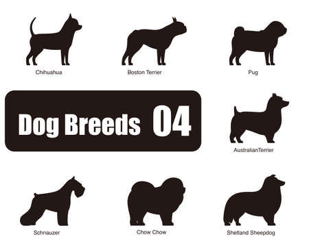 dog: Dog breeds standing on the ground