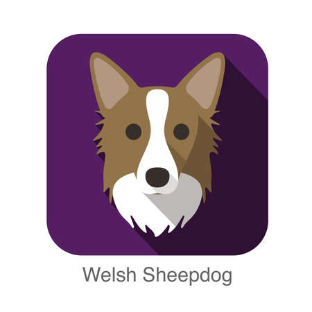 sheepdog: Welsh sheepdog dog face flat icon, dog series