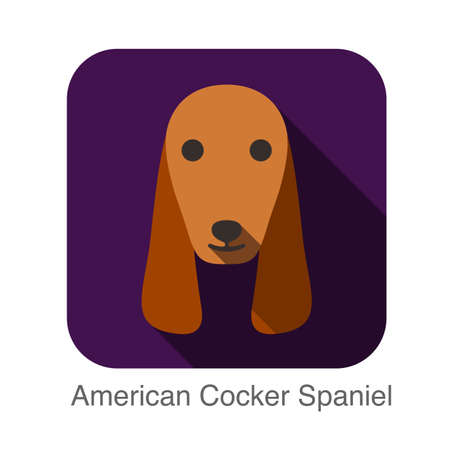 cocker: American Cocker Spaniel animal face flat design Illustration