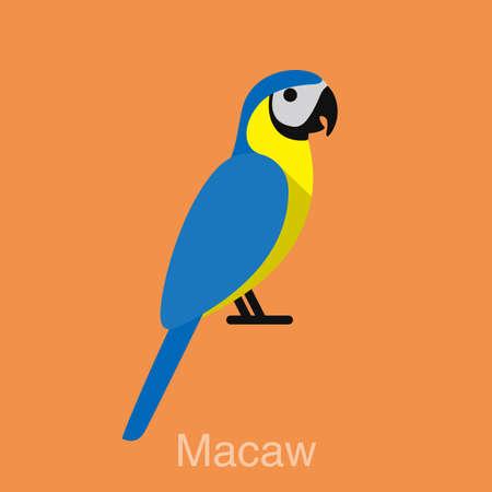 macaw: Blue Macaw, bird seriers