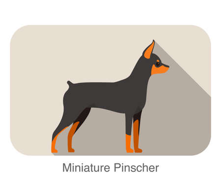 pinscher: Miniature pinscher breed flat icon design